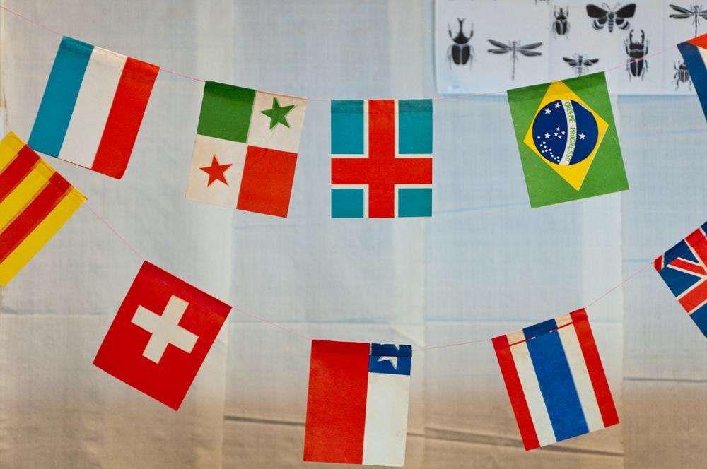 PIC-UP ITEMS -万国旗-