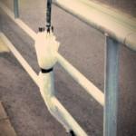 「路上のモノ」  その四