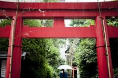 蔵前神社:「観光とローカルの間」東京・蔵前