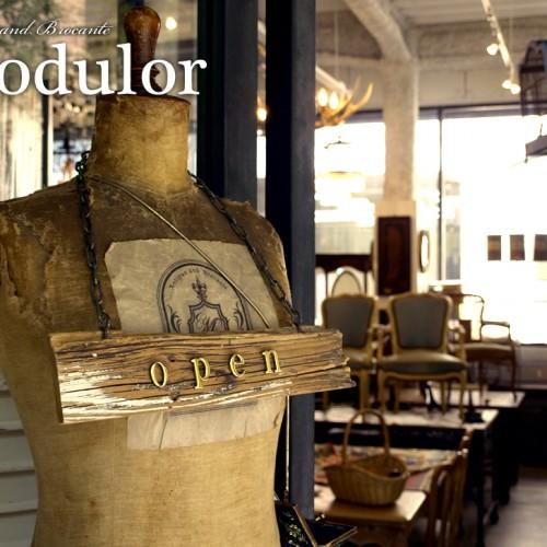 Antique and Brocante Modulor