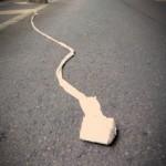 「路上のモノ」 その八