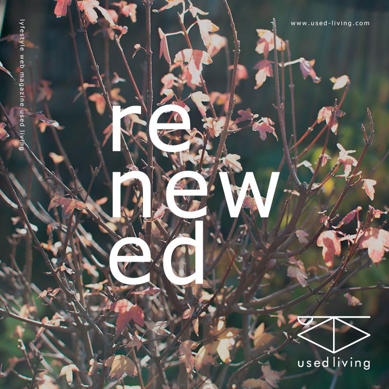 web site renewal