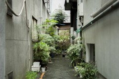 倉庫街の隙間:「観光とローカルの間」東京・蔵前
